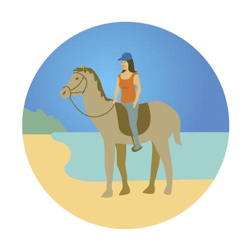 Oceanfront Horseback Ride, North Shore, Oahu, Hawaii