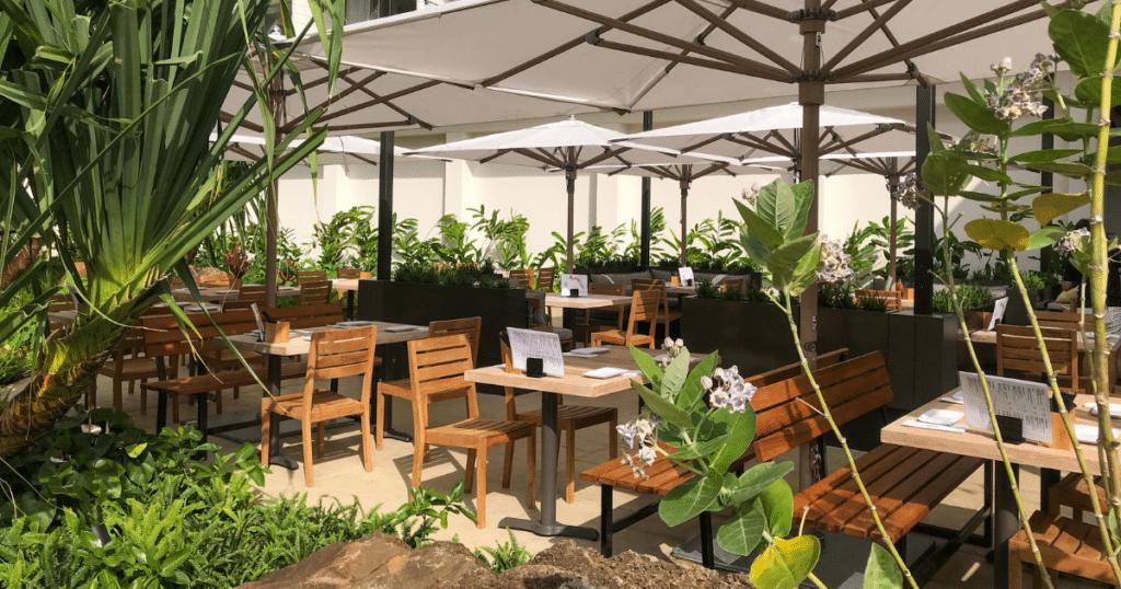 Momosan Waikiki, Alohilani Resort, Outdoor Dining Venues in Waikiki