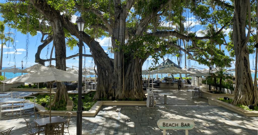 The Beach Bar, Moana Surfrider Hotel, Outdoor Dining Venues in Waikiki