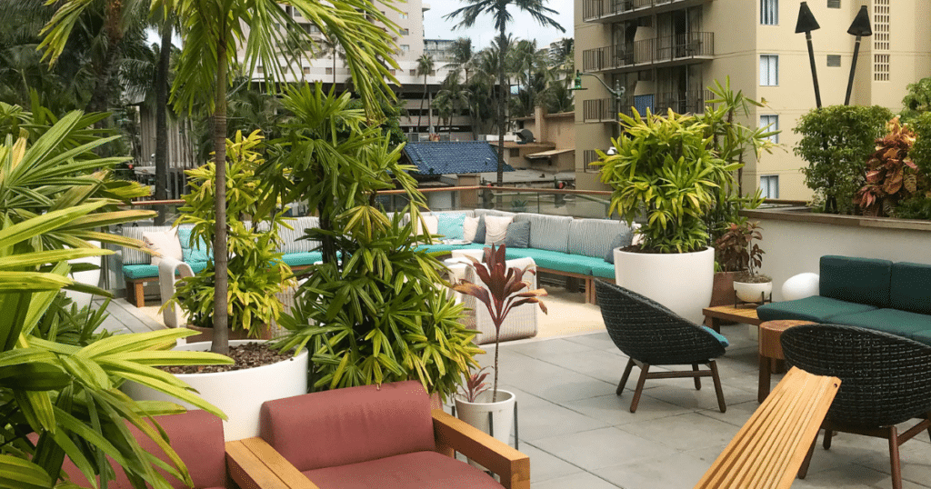 Hideout at The Laylow, Outdoor Dining Venues in Waikiki